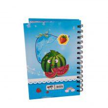 دفترچه یادداشت طرح هندوانه